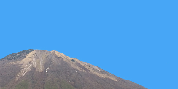 yanago22